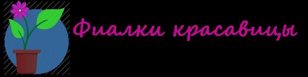 Комнатные фиалки Logo